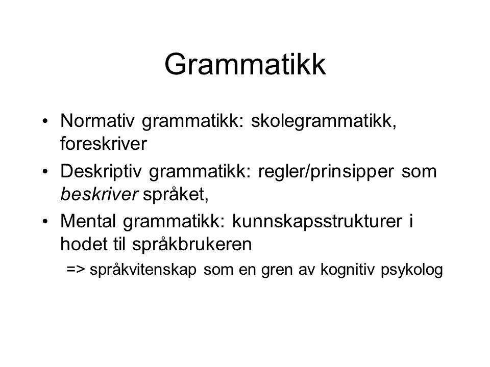 Grammatikk Normativ grammatikk: skolegrammatikk, foreskriver Deskriptiv grammatikk: regler/prinsipper som beskriver språket, Mental grammatikk: kunnsk