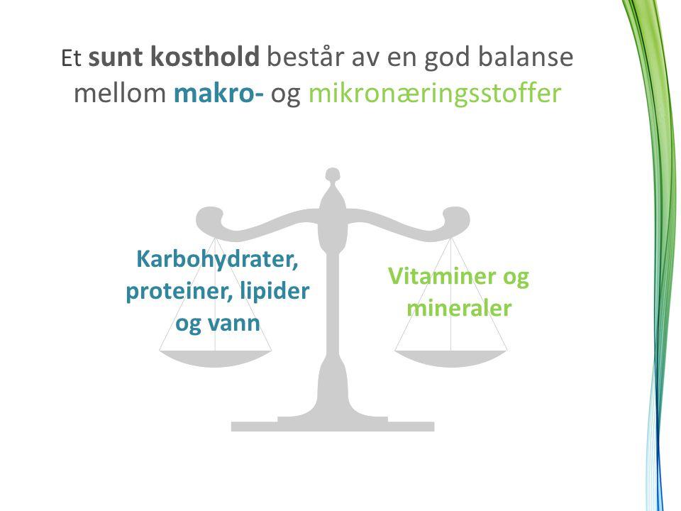 Et sunt kosthold består av en god balanse mellom makro- og mikronæringsstoffer Karbohydrater, proteiner, lipider og vann Vitaminer og mineraler