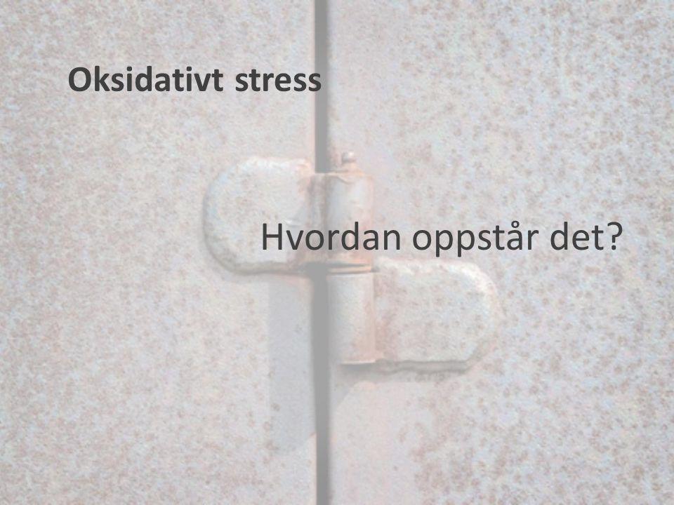Hvordan oppstår det? Oksidativt stress