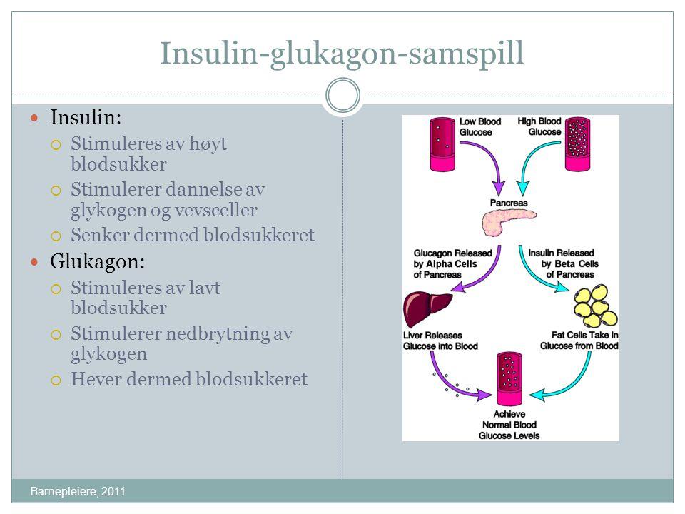 Insulin-glukagon-samspill Insulin:  Stimuleres av høyt blodsukker  Stimulerer dannelse av glykogen og vevsceller  Senker dermed blodsukkeret Glukag