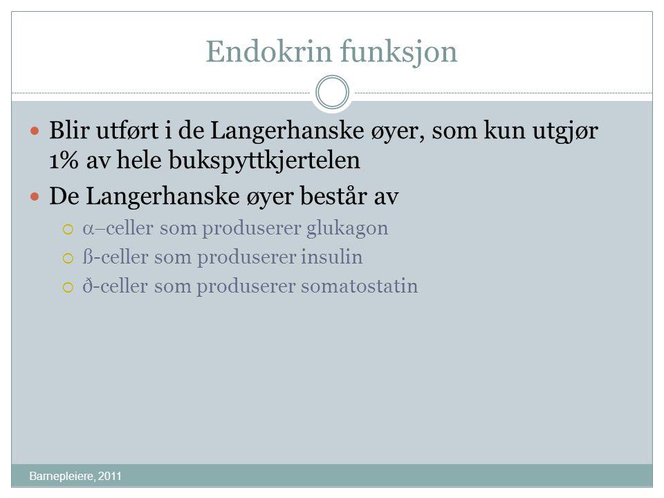 Eksempel Barnepleiere, 2011 Snorre bruker fortsatt 20 enheter insulin pr døgn, og før frokost er hans blodsukker 17 mmol/l.