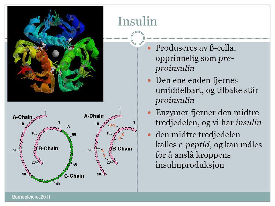 Litt mer om insulin Barnepleiere, 2011 Insulin består av 51 aminosyrer vanligvis produserer kroppen 36-48 IE/døgn 50-70% av produksjonen er i forbindelse med måltider, resten som basalsekresjon jevnt fordelt ut over døgnet, med stigning mot morgenen Stimulus for insulinutskillelse er høyt blodsukker, tarmhormoner og reflekser
