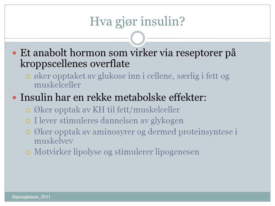 Hva gjør insulin? Barnepleiere, 2011 Et anabolt hormon som virker via reseptorer på kroppscellenes overflate  øker opptaket av glukose inn i cellene,