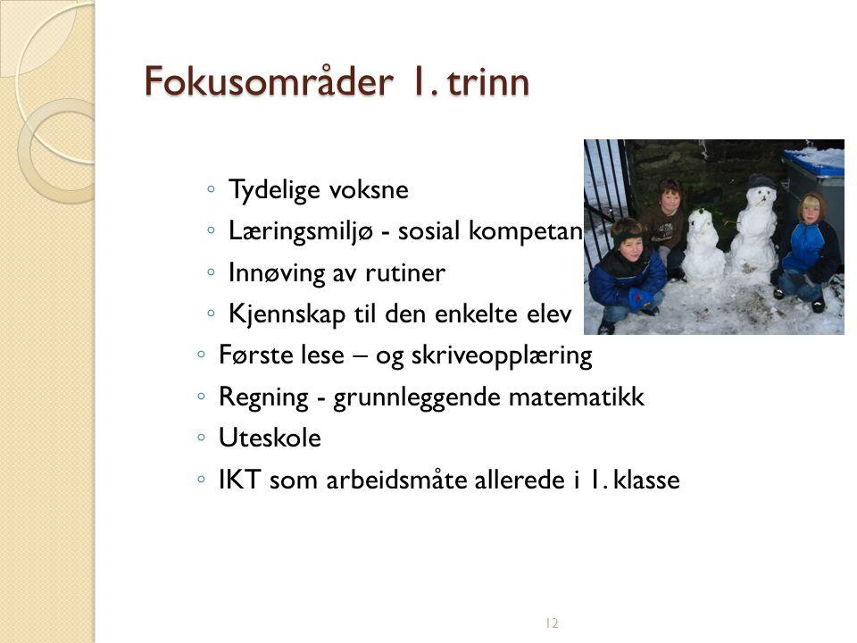 12 Fokusområder 1.