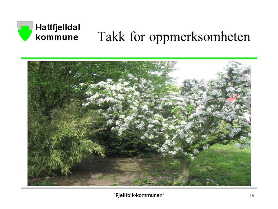 Takk for oppmerksomheten Fjellfolk-kommunen 19