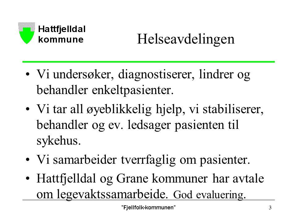 Fjellfolk-kommunen 14 Utfordringer Fysioterapi Per idag er det allerede et udekket behov for fysioterapi i Hattfjelldal kommune.