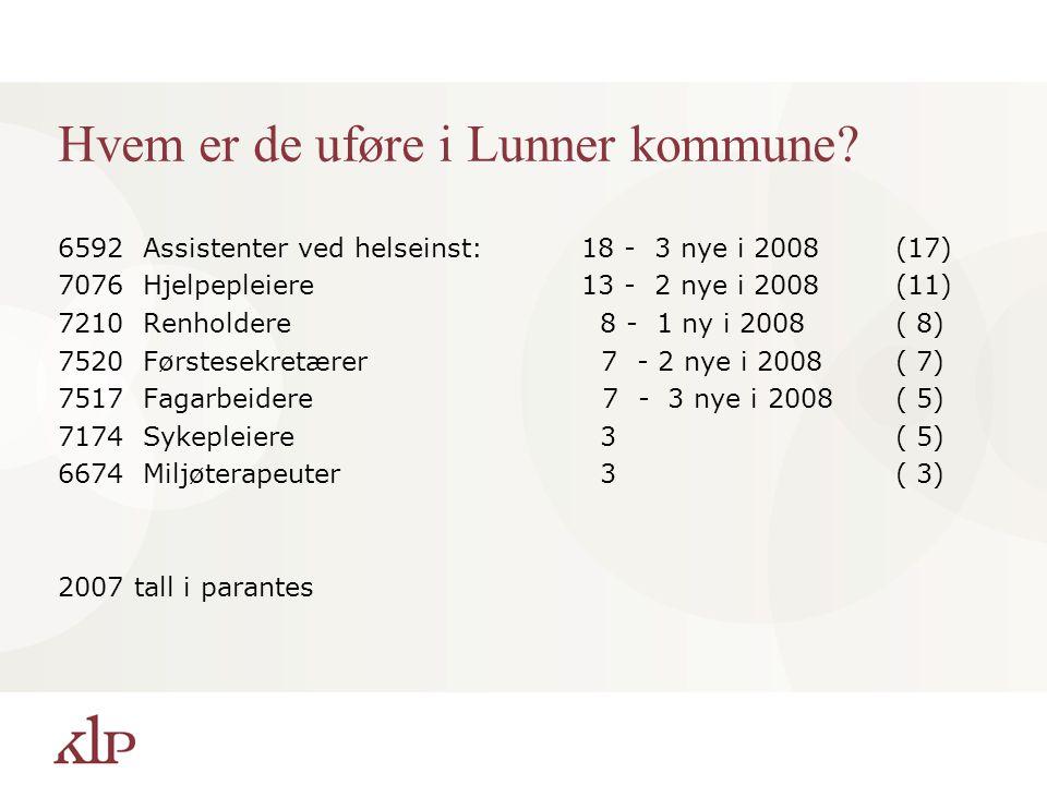 Hvem er de uføre i Lunner kommune? 6592 Assistenter ved helseinst:18 - 3 nye i 2008(17) 7076 Hjelpepleiere 13 - 2 nye i 2008(11) 7210 Renholdere 8 - 1