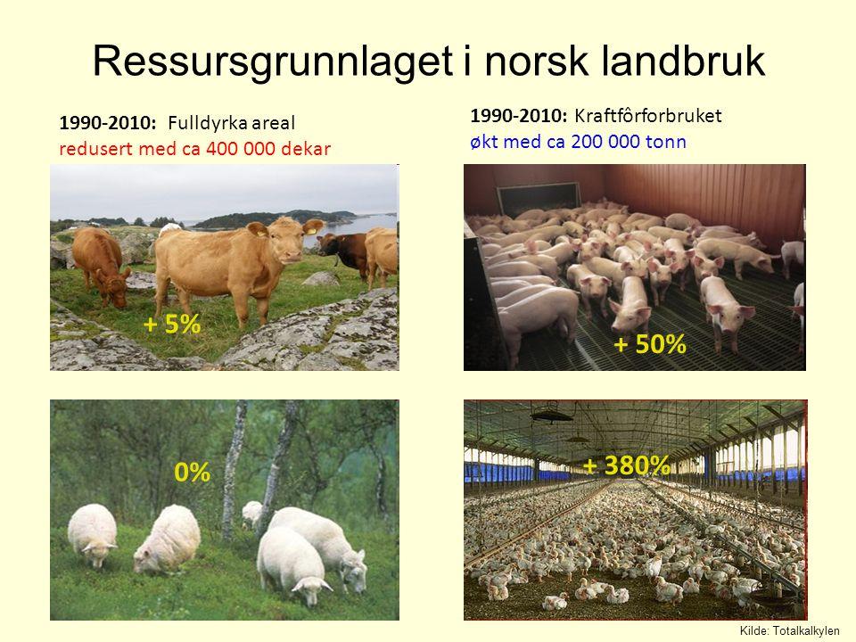 Kilde: SSB, Totalkalkylen 1979 Areal pr bruk: 75 daa Kjøttprod.