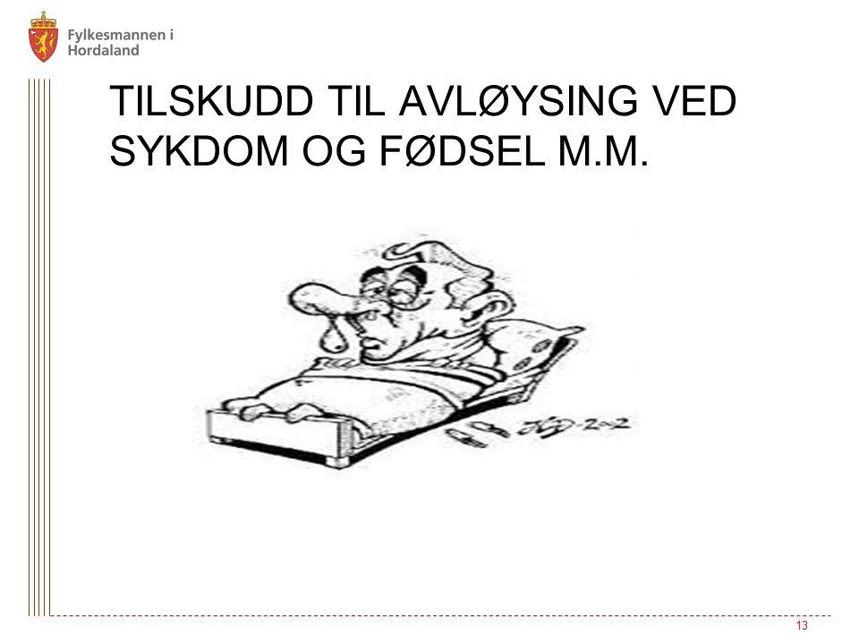 TILSKUDD TIL AVLØYSING VED SYKDOM OG FØDSEL M.M. 13