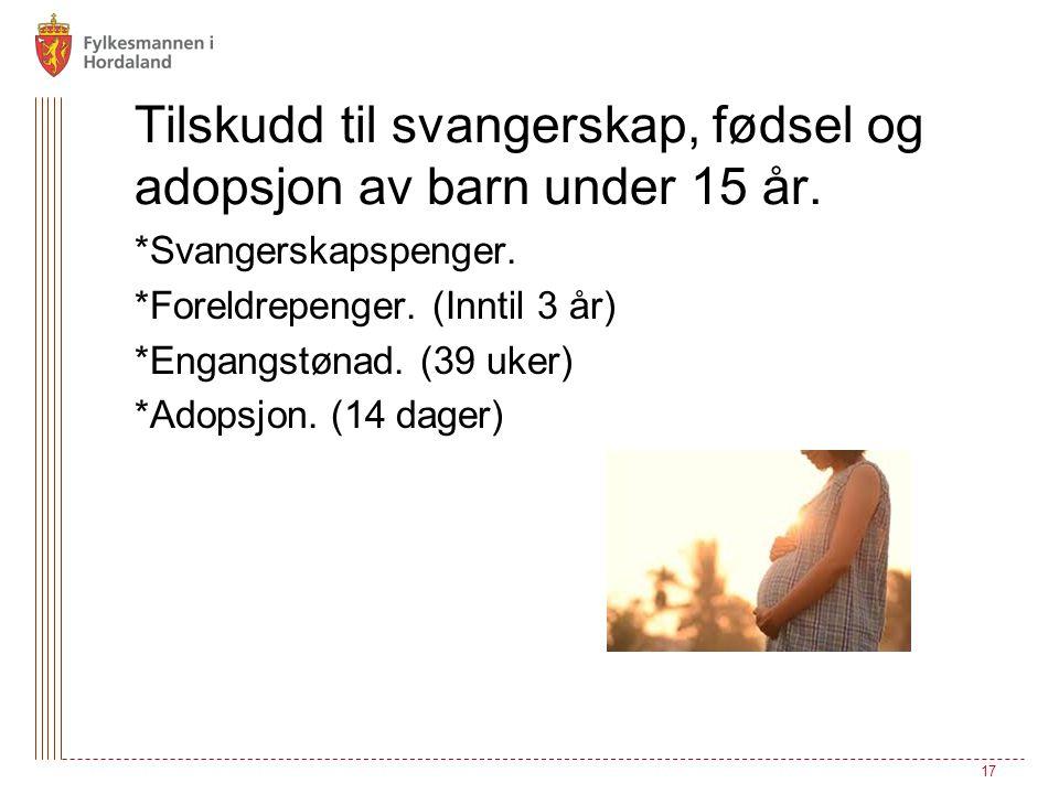 Tilskudd til svangerskap, fødsel og adopsjon av barn under 15 år. 17 *Svangerskapspenger. *Foreldrepenger. (Inntil 3 år) *Engangstønad. (39 uker) *Ado