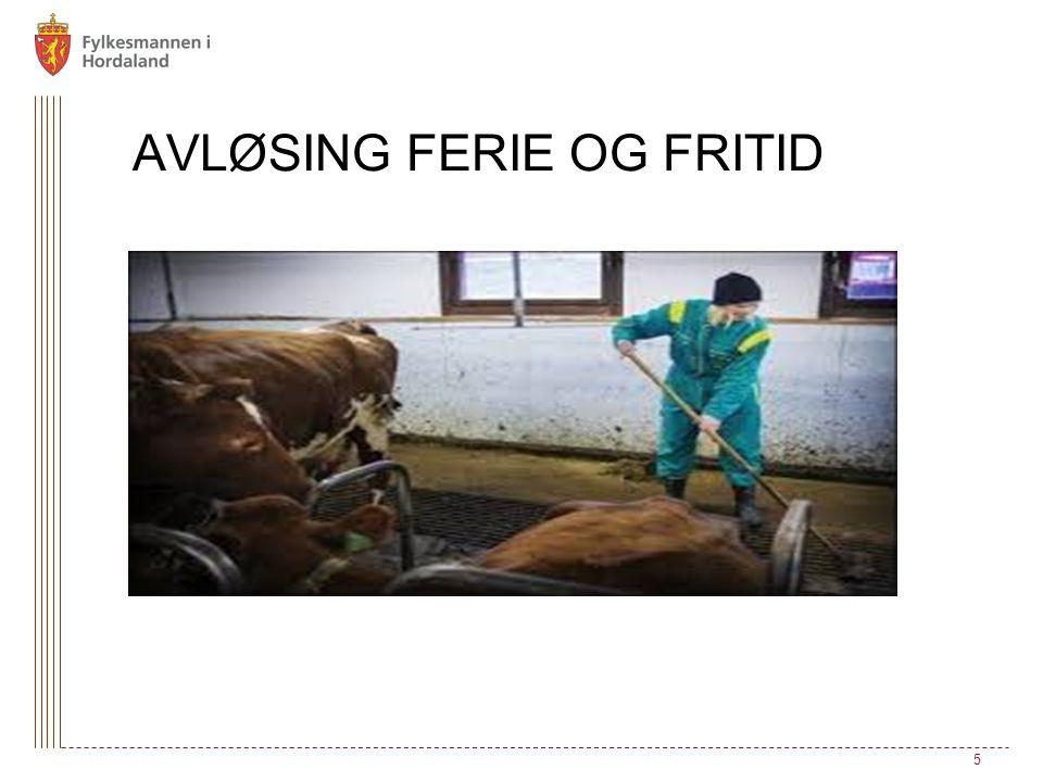 AVLØSING FERIE OG FRITID 5