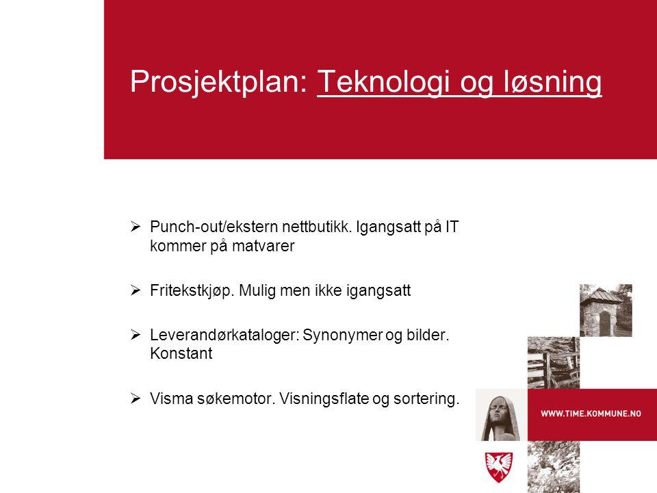 Prosjektplan: Teknologi og løsning  Punch-out/ekstern nettbutikk. Igangsatt på IT kommer på matvarer  Fritekstkjøp. Mulig men ikke igangsatt  Lever