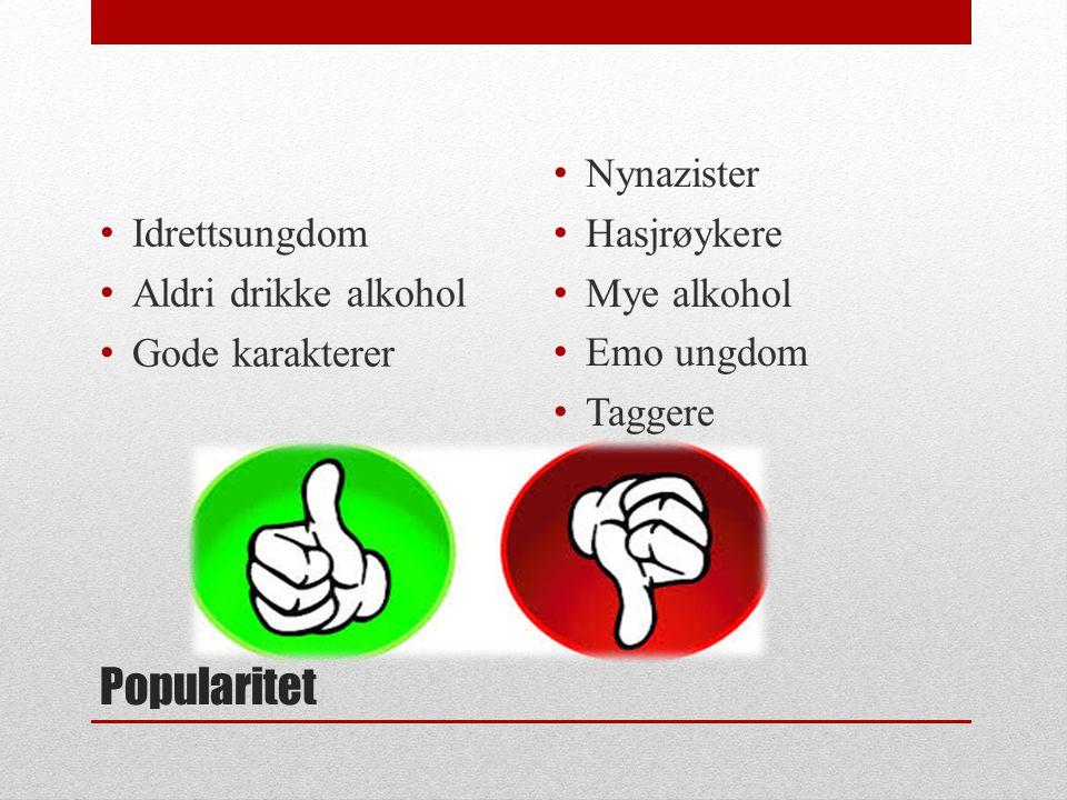 Popularitet Idrettsungdom Aldri drikke alkohol Gode karakterer Nynazister Hasjrøykere Mye alkohol Emo ungdom Taggere