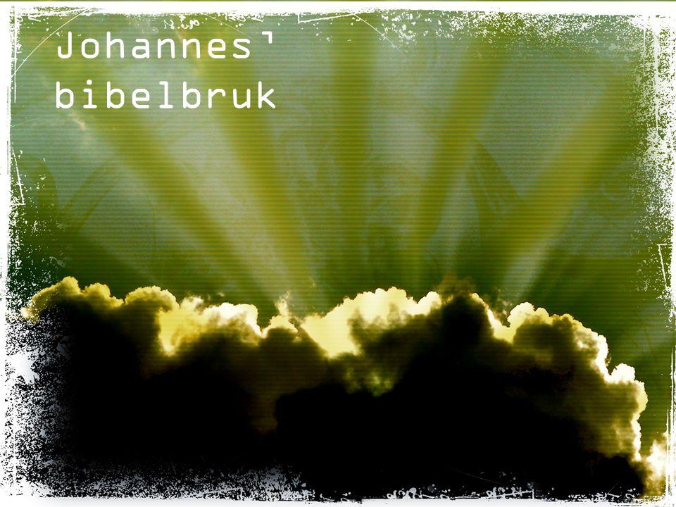 Johannes' bibelbruk