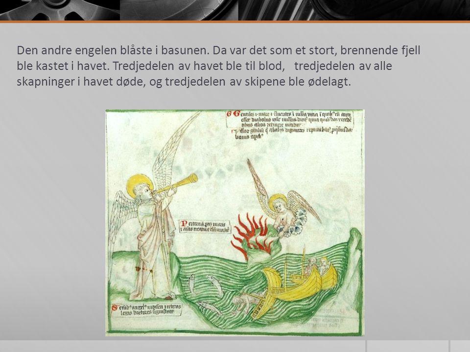Den andre engelen blåste i basunen. Da var det som et stort, brennende fjell ble kastet i havet.