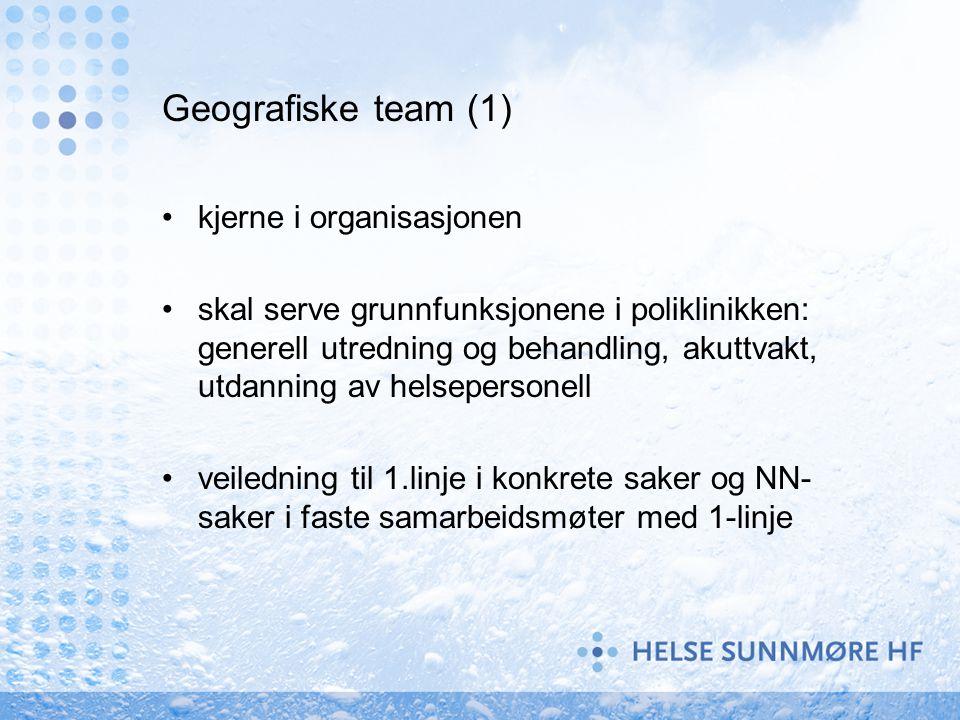 Geografiske team (1) kjerne i organisasjonen skal serve grunnfunksjonene i poliklinikken: generell utredning og behandling, akuttvakt, utdanning av he