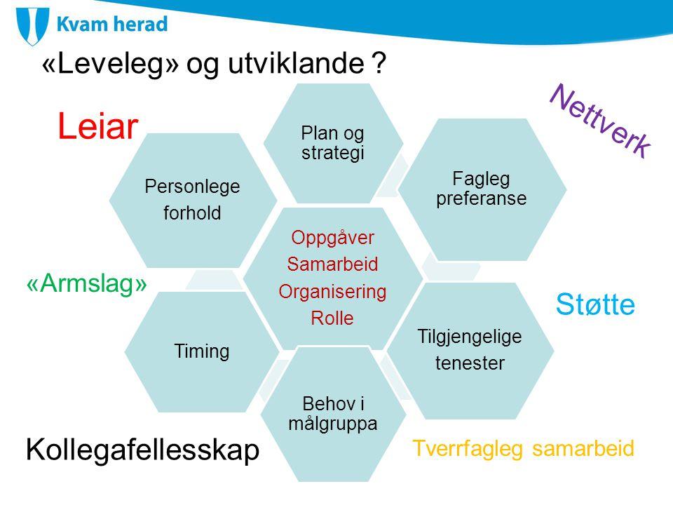 «Leveleg» og utviklande ? Oppgåver Samarbeid Organisering Rolle Plan og strategi Fagleg preferanse Tilgjengelige tenester Behov i målgruppa Timing Per
