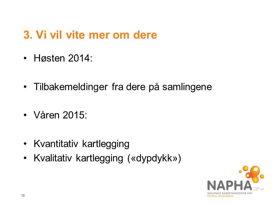 13 3. Vi vil vite mer om dere Høsten 2014: Tilbakemeldinger fra dere på samlingene Våren 2015: Kvantitativ kartlegging Kvalitativ kartlegging («dypdyk