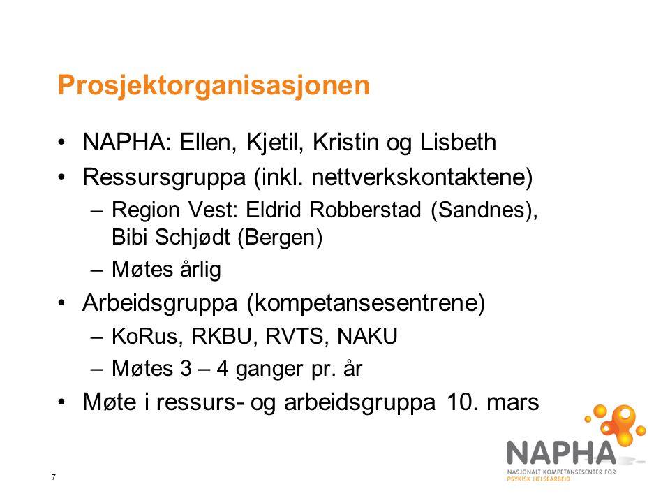 7 Prosjektorganisasjonen NAPHA: Ellen, Kjetil, Kristin og Lisbeth Ressursgruppa (inkl. nettverkskontaktene) –Region Vest: Eldrid Robberstad (Sandnes),