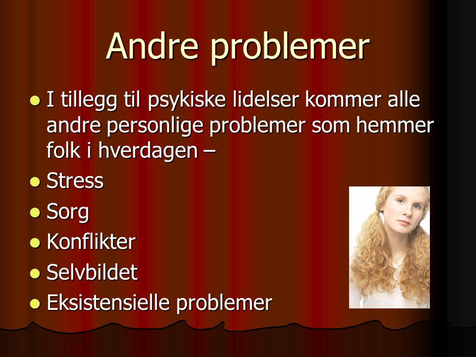 Andre problemer I tillegg til psykiske lidelser kommer alle andre personlige problemer som hemmer folk i hverdagen – I tillegg til psykiske lidelser k