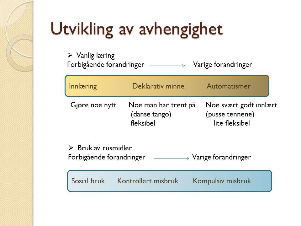 Utvikling av avhengighet Sosial bruk Kontrollert misbruk Kompulsiv misbruk  Bruk av rusmidler Forbigående forandringer Varige forandringer Innlæring