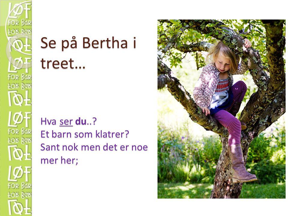 Se på Bertha i treet… Hva ser du..? Et barn som klatrer? Sant nok men det er noe mer her;
