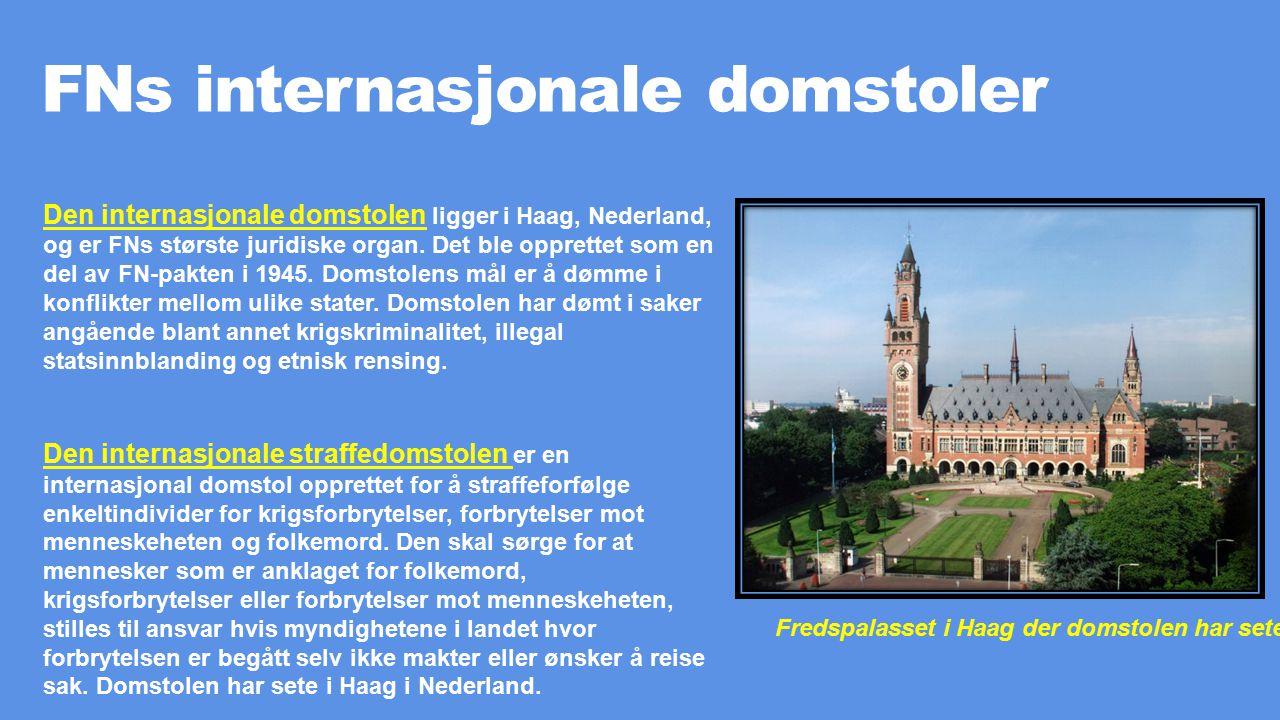 FNs internasjonale domstoler Den internasjonale domstolen ligger i Haag, Nederland, og er FNs største juridiske organ. Det ble opprettet som en del av