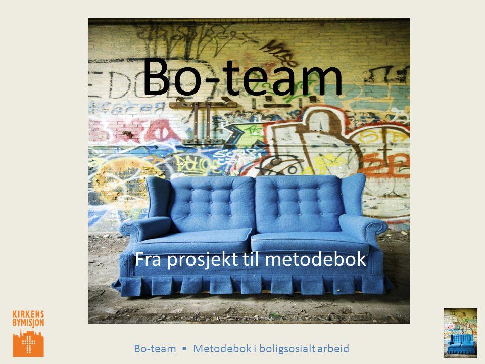 Bo-team Metodebok i boligsosialt arbeid Suksesskriterier forts: Respekt – Tydelighet – Ikke overta det brukeren selv kan gjøre – Forvent handling og deltagelse i prosessen