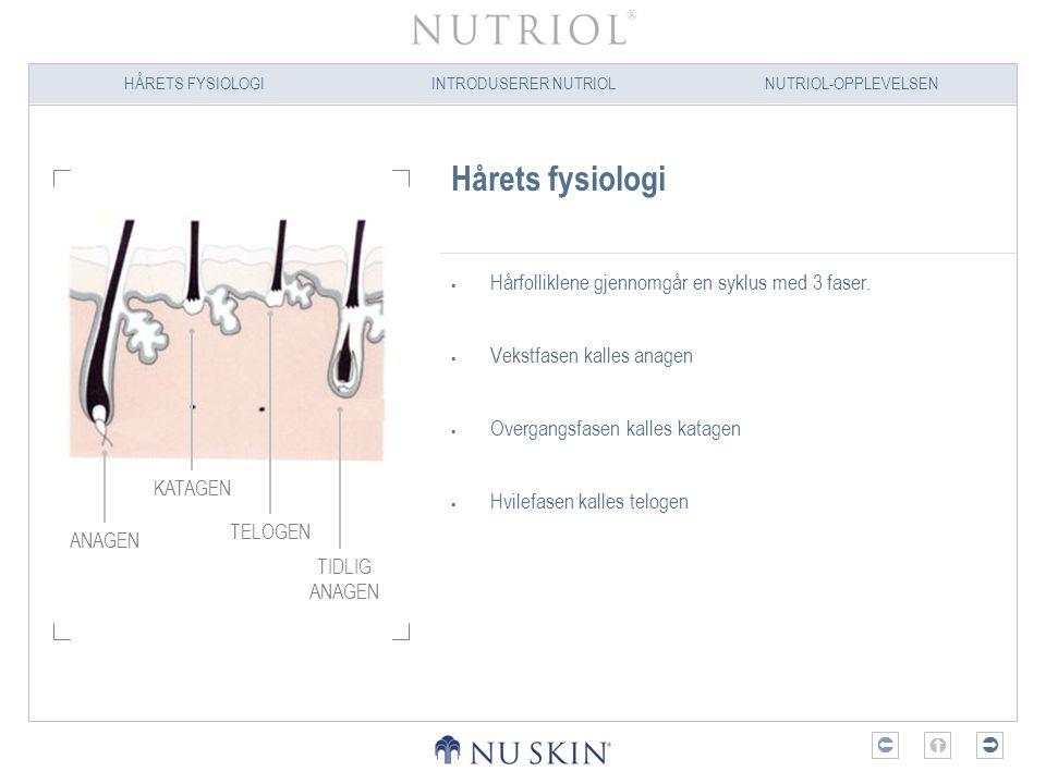 HÅRETS FYSIOLOGIINTRODUSERER NUTRIOLNUTRIOL-OPPLEVELSEN  Hårets fysiologi  Hårfolliklene gjennomgår en syklus med 3 faser.  Vekstfasen kalles ana