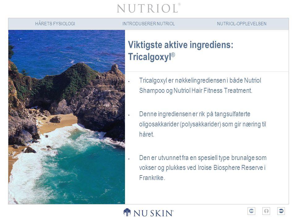 HÅRETS FYSIOLOGIINTRODUSERER NUTRIOLNUTRIOL-OPPLEVELSEN  Viktigste aktive ingrediens: Tricalgoxyl ®  Tricalgoxyl er nøkkelingrediensen i både Nutr