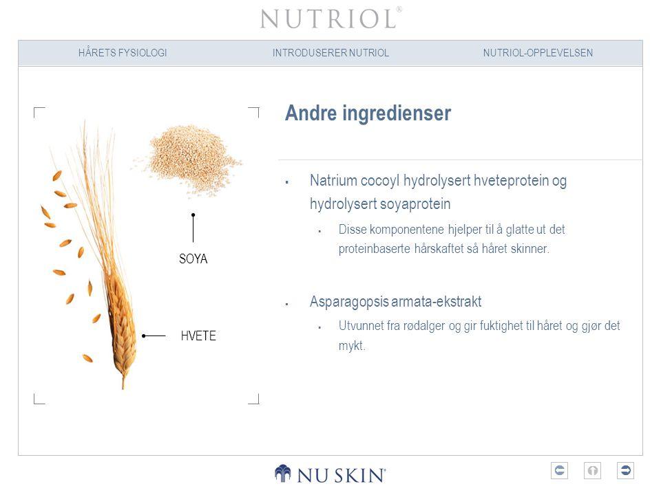 HÅRETS FYSIOLOGIINTRODUSERER NUTRIOLNUTRIOL-OPPLEVELSEN  Andre ingredienser  Natrium cocoyl hydrolysert hveteprotein og hydrolysert soyaprotein 
