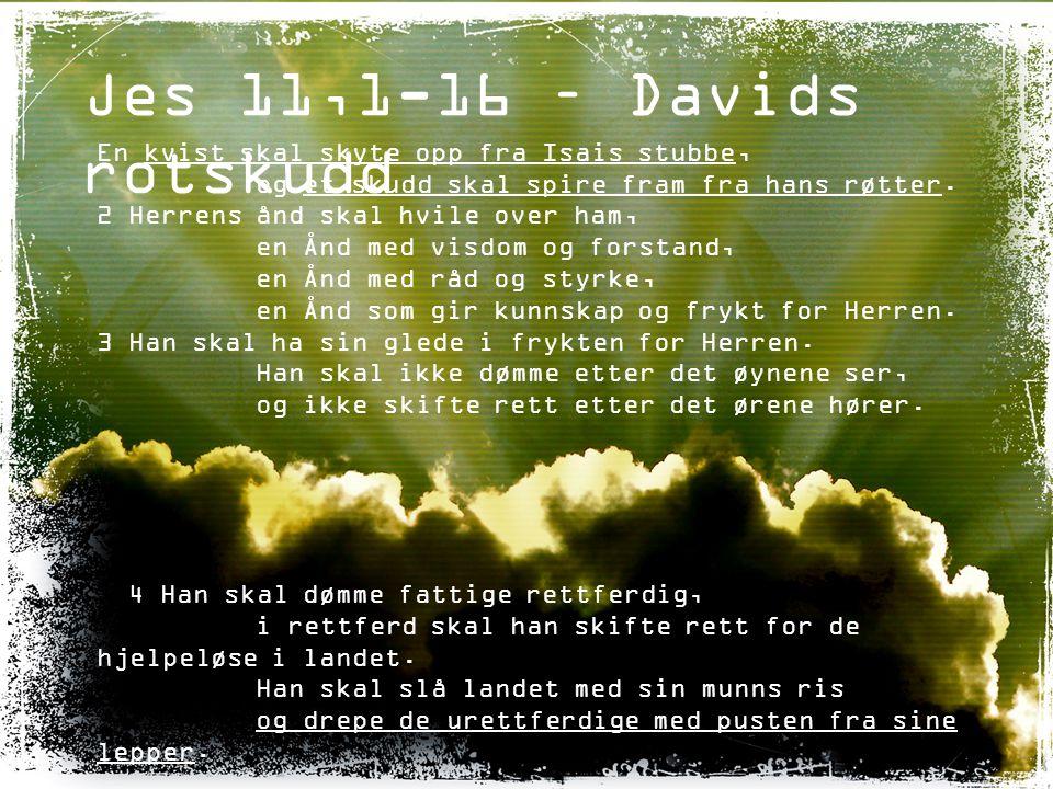Jes 11,1-16 – Davids rotskudd 10 Den dagen skal Isais rotskudd stå som et banner for folkene.