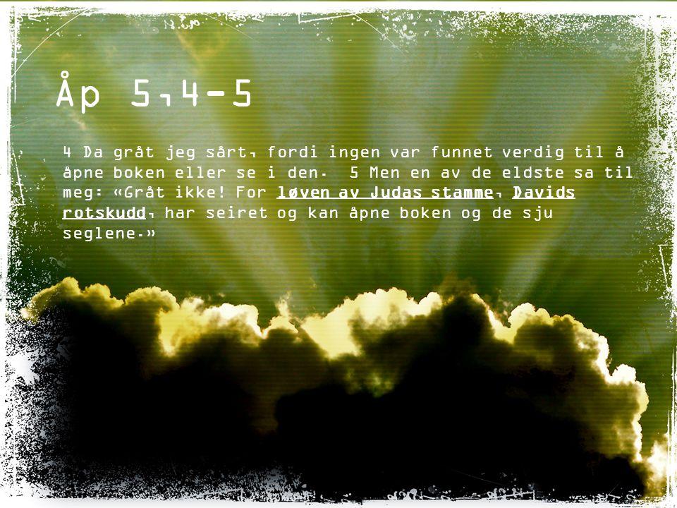 Åp 5,6 6 Og jeg så et lam som sto midt på tronen, mellom de fire skapningene og i kretsen av de eldste, og det så ut som lammet var slaktet.