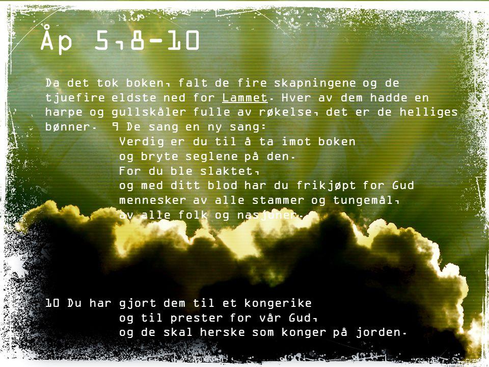 Åp 5,12 De ropte med høy røst: Verdig er Lammet som ble slaktet, verdig til å få all makt og rikdom, visdom og styrke, ære og pris og takk.