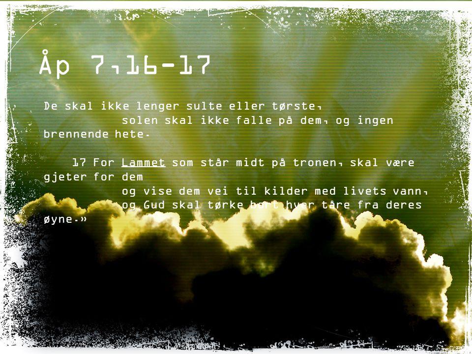 Åp 7,16-17 De skal ikke lenger sulte eller tørste, solen skal ikke falle på dem, og ingen brennende hete. 17 For Lammet som står midt på tronen, skal