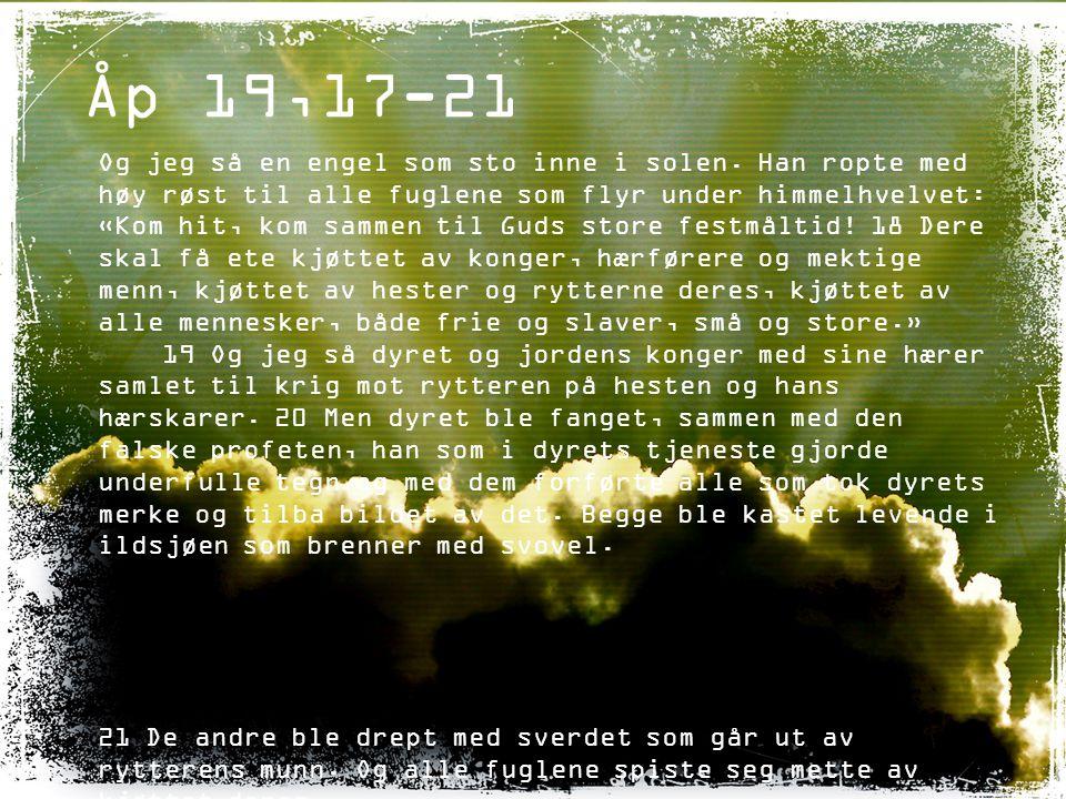 Åp 14,14-19 Og jeg så, og se.– en hvit sky, og på skyen satt en som var lik en menneskesønn.