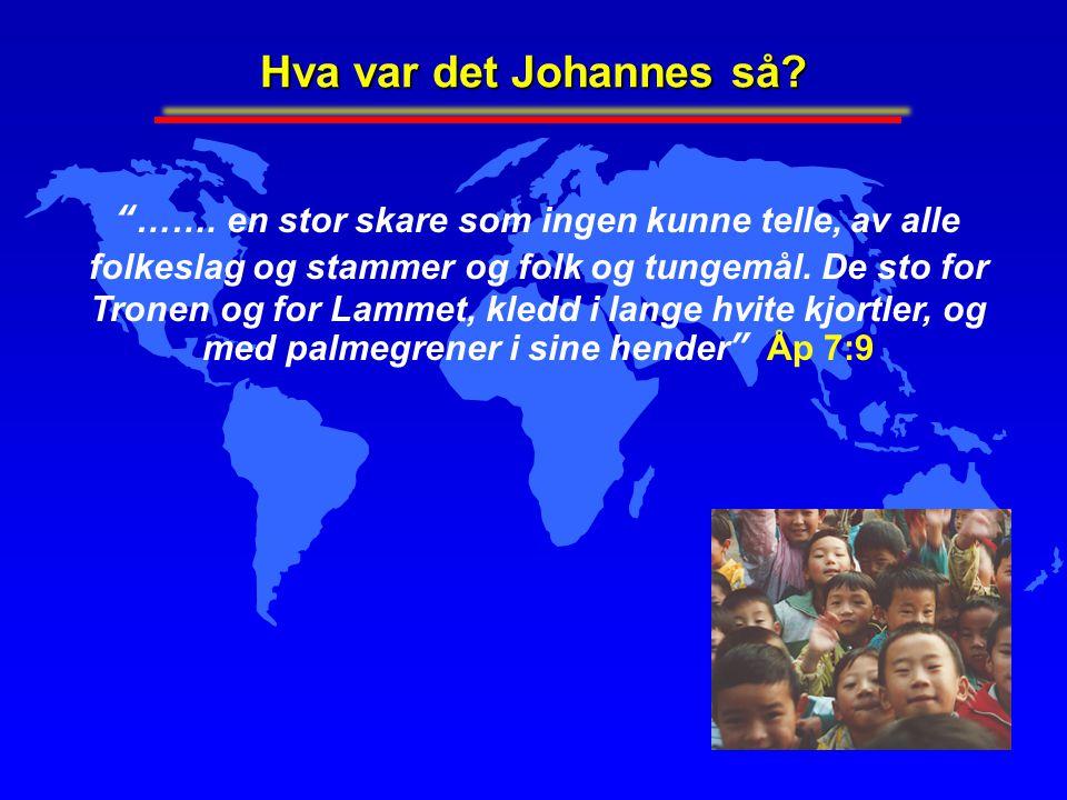 """Hva var det Johannes så? """"……. en stor skare som ingen kunne telle, av alle folkeslag og stammer og folk og tungemål. De sto for Tronen og for Lammet,"""