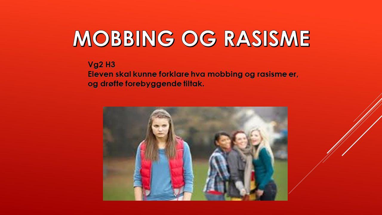 Vg2 H3 Eleven skal kunne forklare hva mobbing og rasisme er, og drøfte forebyggende tiltak.