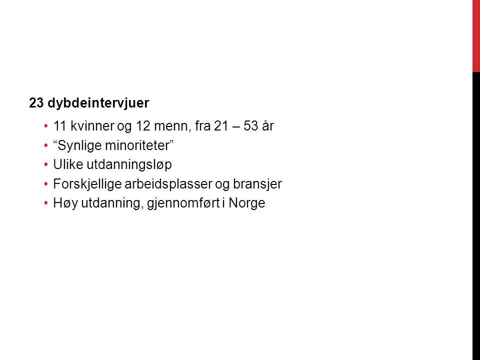 23 dybdeintervjuer 11 kvinner og 12 menn, fra 21 – 53 år Synlige minoriteter Ulike utdanningsløp Forskjellige arbeidsplasser og bransjer Høy utdanning, gjennomført i Norge