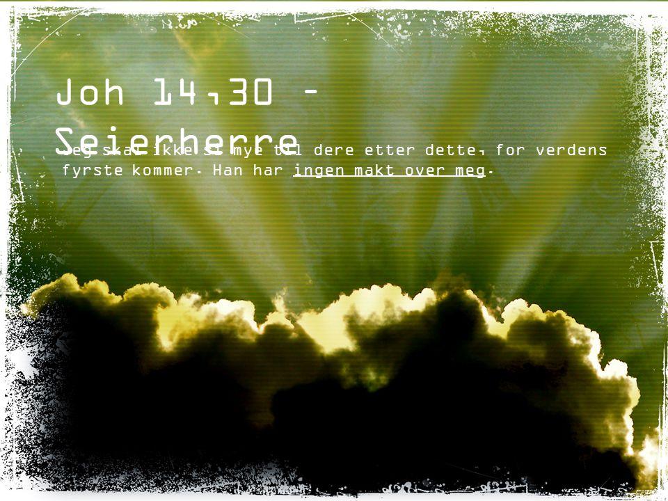 Joh 14,30 – Seierherre Jeg skal ikke si mye til dere etter dette, for verdens fyrste kommer. Han har ingen makt over meg.