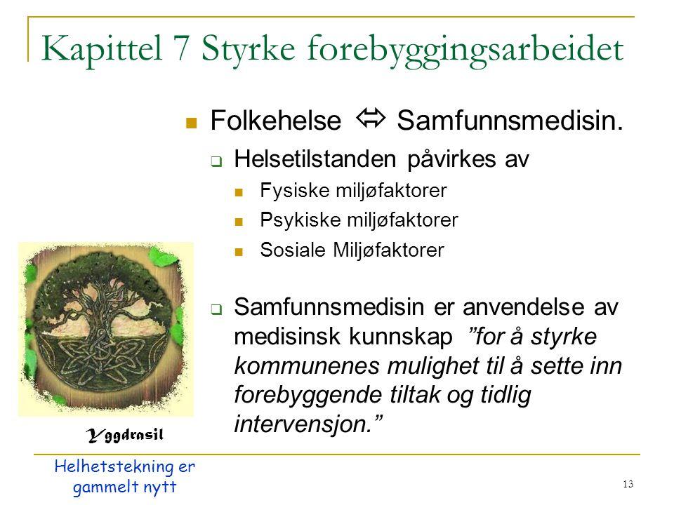 13 Kapittel 7 Styrke forebyggingsarbeidet Folkehelse  Samfunnsmedisin.