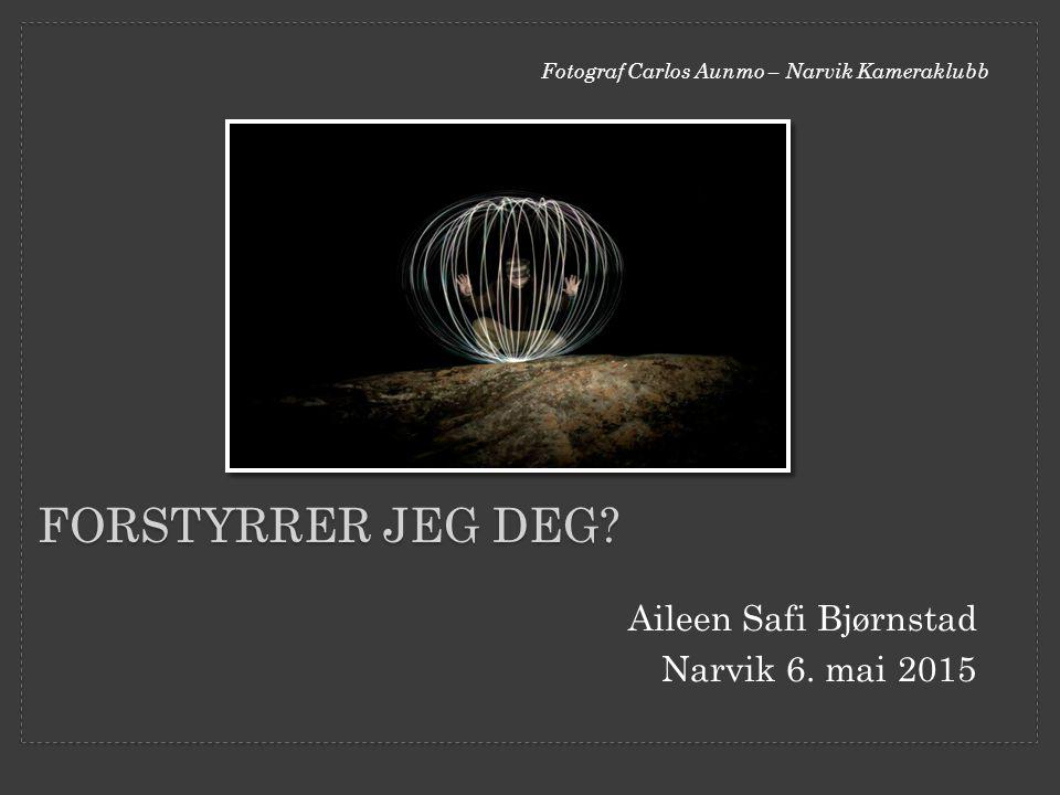 Aileen Safi Bjørnstad Narvik 6. mai 2015 FORSTYRRER JEG DEG? Fotograf Carlos Aunmo – Narvik Kameraklubb