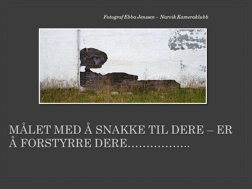 MÅLET MED Å SNAKKE TIL DERE – ER Å FORSTYRRE DERE…………….. Fotograf Ebba Jenssen – Narvik Kameraklubb