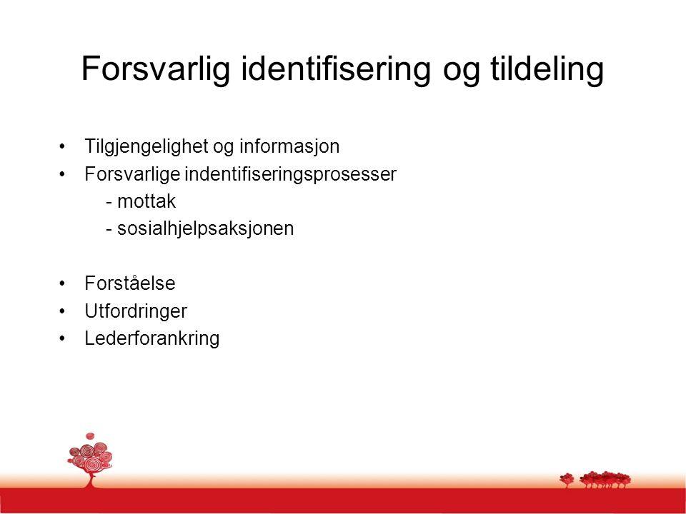 Forsvarlig identifisering og tildeling Tilgjengelighet og informasjon Forsvarlige indentifiseringsprosesser - mottak - sosialhjelpsaksjonen Forståelse