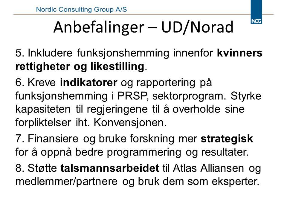 Anbefalinger – UD/Norad 5.