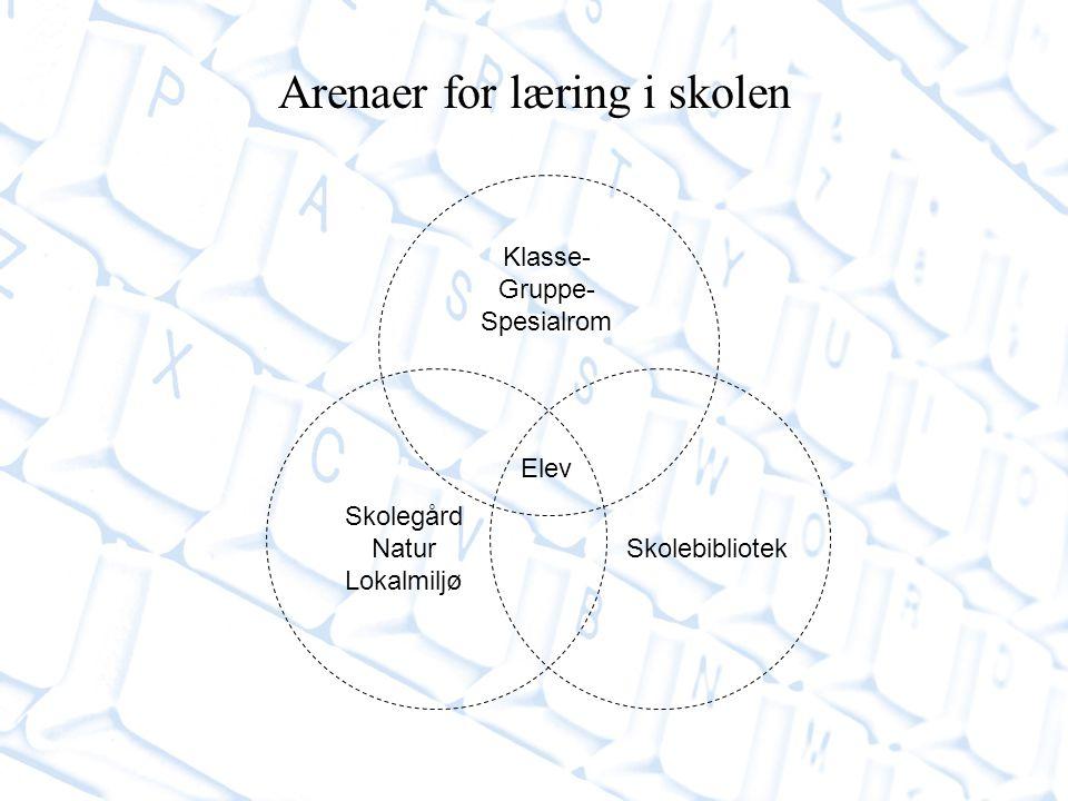 Arenaer for læring i skolen Klasse- Gruppe- Spesialrom Skolebibliotek Skolegård Natur Lokalmiljø Elev