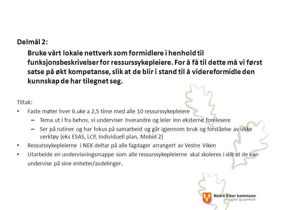 Delmål 2: Bruke vårt lokale nettverk som formidlere i henhold til funksjonsbeskrivelser for ressurssykepleiere.