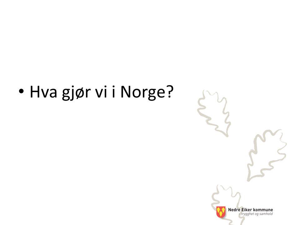 Hva gjør vi i Norge?