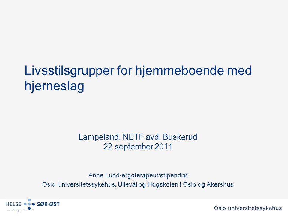 Livsstilsgrupper for hjemmeboende med hjerneslag Lampeland, NETF avd.