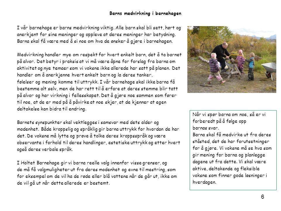 Skoggruppemetoden Skoggruppa består av alle de eldste barna i barnehagen.